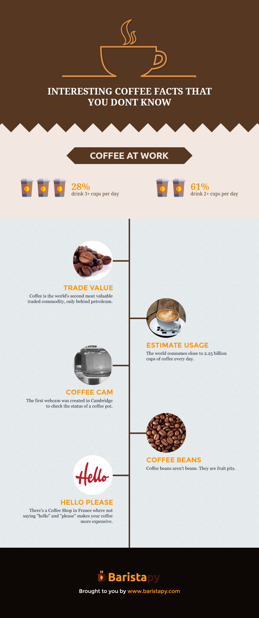 Milk frother infographic